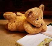 Photo of teddy bear reading a book